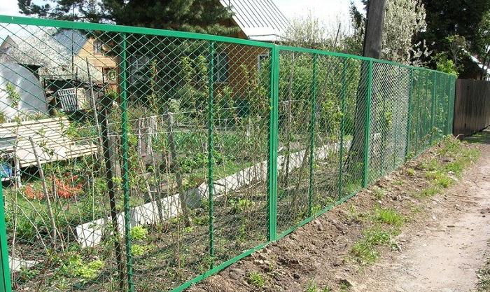 Ограда из сетки рабицы